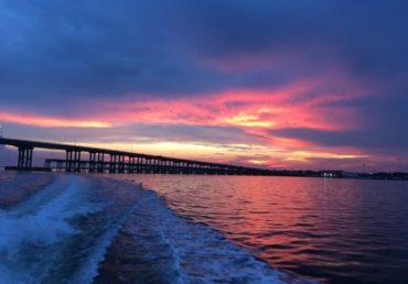 Dolphin cruise & Sun Set tour